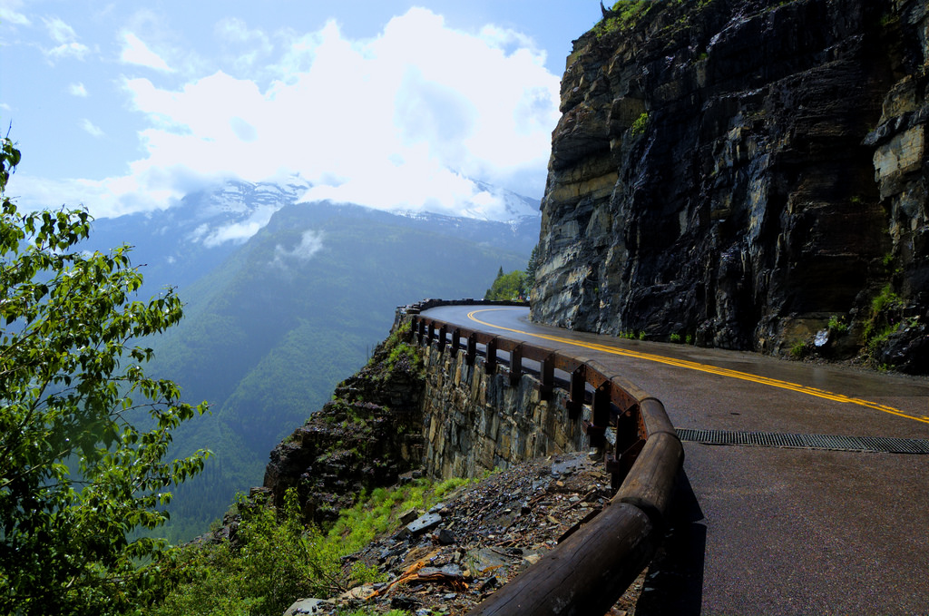 national parks, glacier national park, grinnell, highline, trail, hikes, adventure, forest, wildlife, wildflowers, nature going to the sun road