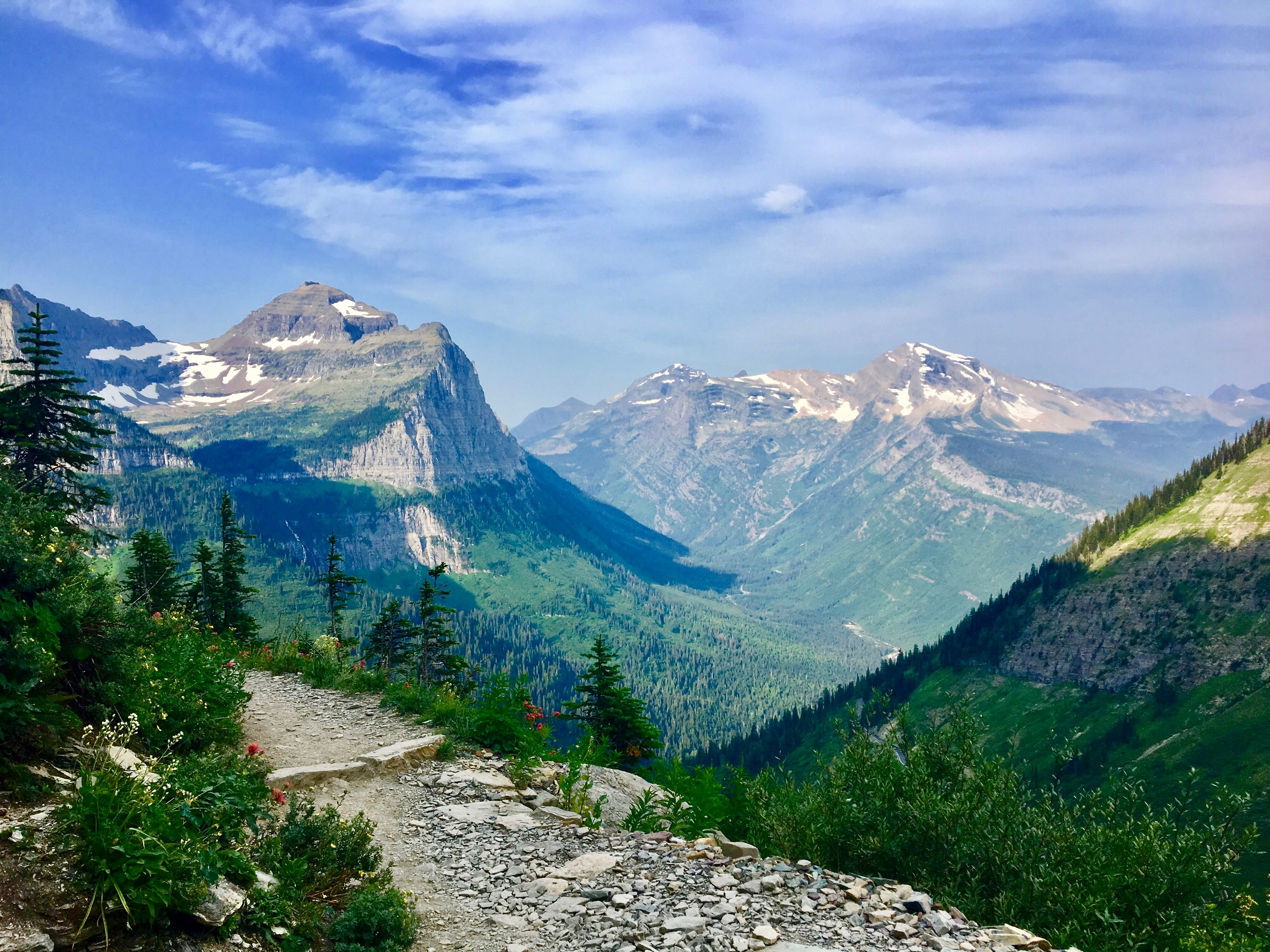 national parks, glacier national park, grinnell, highline, trail, hikes, adventure, forest, wildlife, wildflowers, nature highline trail