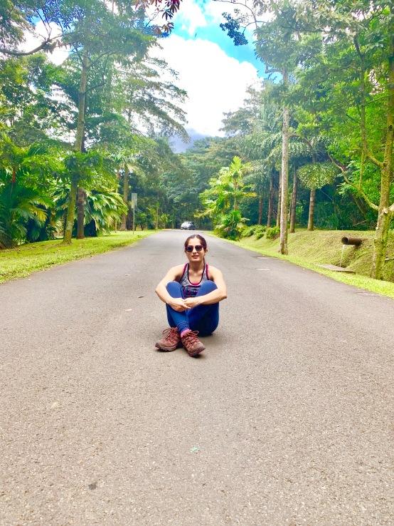 honolulu, waikiki, gorgeous beaches, palm trees, hawaii, sunglasses, hang loose, oahu, hoomaluhia botanical garden, lush greenery