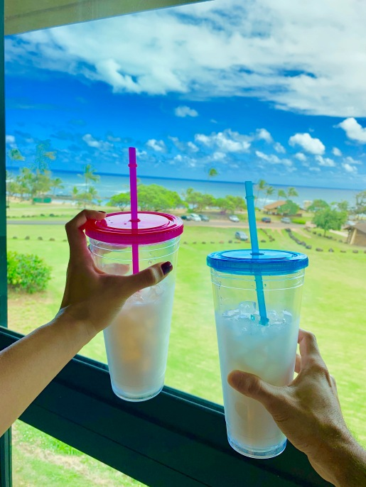 hilton garden inn wailua bay, kauai, lydgate state beach park, hawaii