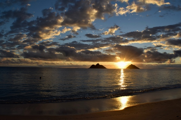 honolulu, waikiki, gorgeous beaches, palm trees, hawaii, sunglasses, hang loose, oahu, lanikai beach, sunrise, pillbox, hike