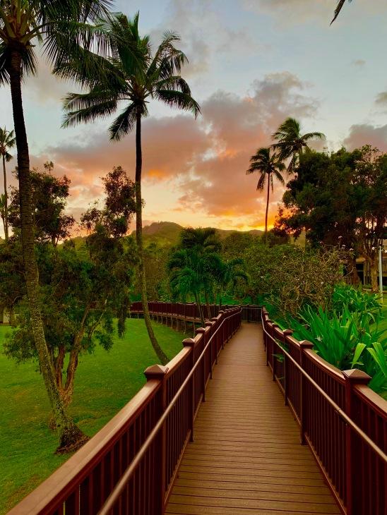 Stunning landscape, lush greenery of Kauai, hawaii, sunset