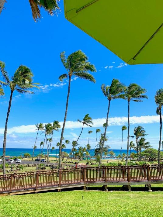 Hilton Garden Inn Wailua Bay Kauai, beaches, palm trees, hawaii