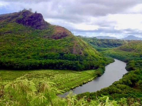 Stunning landscape, lush greenery of Kauai, hawaii