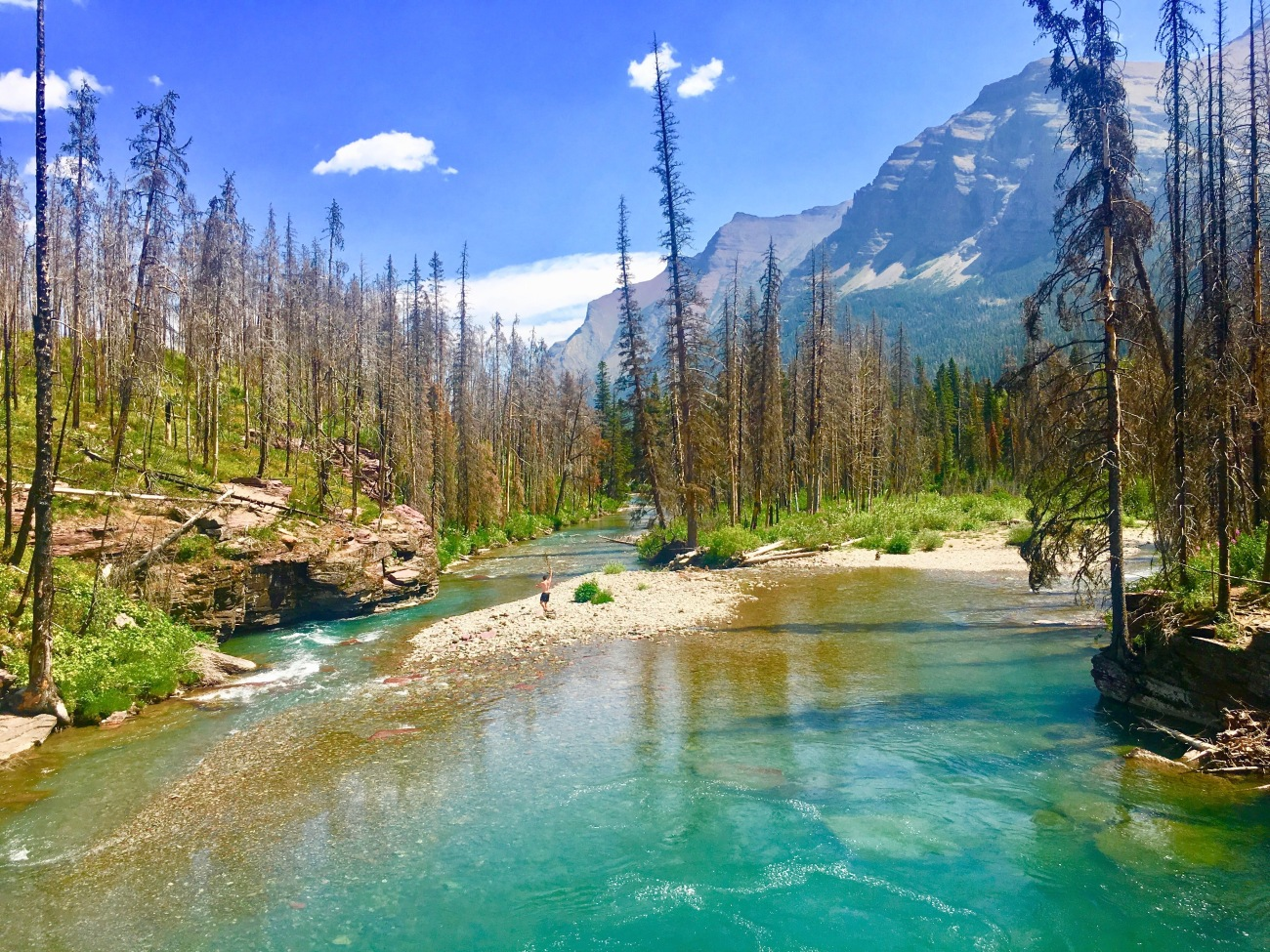 national parks, glacier national park, grinnell, highline, trail, hikes, adventure, forest, wildlife, wildflowers, nature lake saint mary
