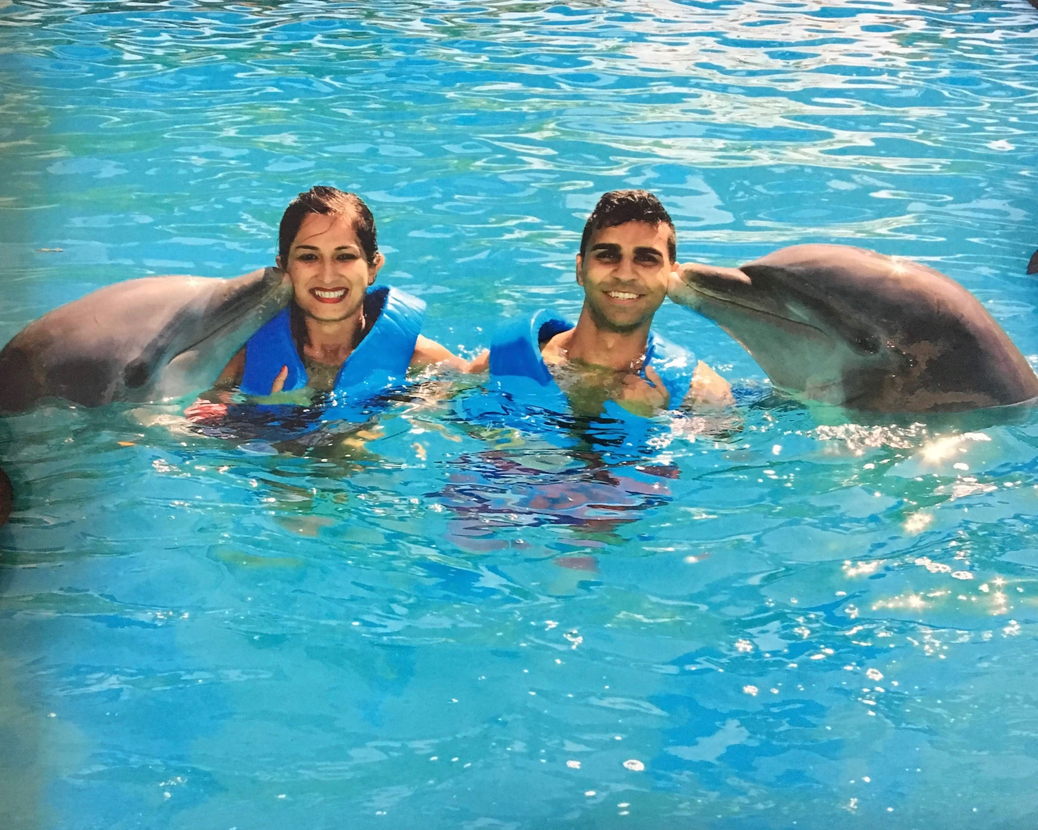 white sand beaches of cancun mexico, paradise island, resorts on hotel zone, chilling at the beach, interactive aquarium, swimming with dolphins