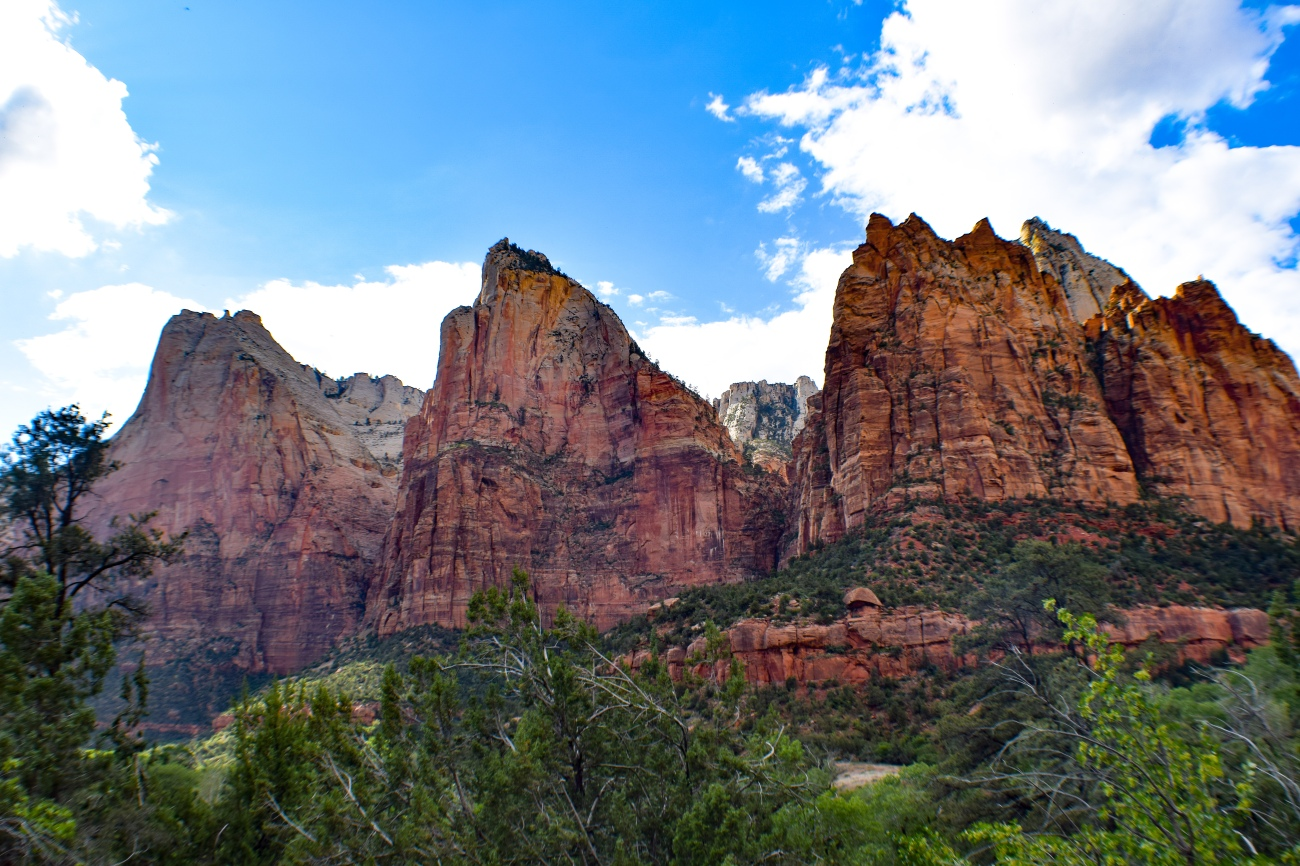 Zion national park, virgin river, landscape, sandstone cliffs, Utah National Parks, beautiful nature, Angel's Landing Summit, adventure hike, beautiful view, Court of the Partriarchs