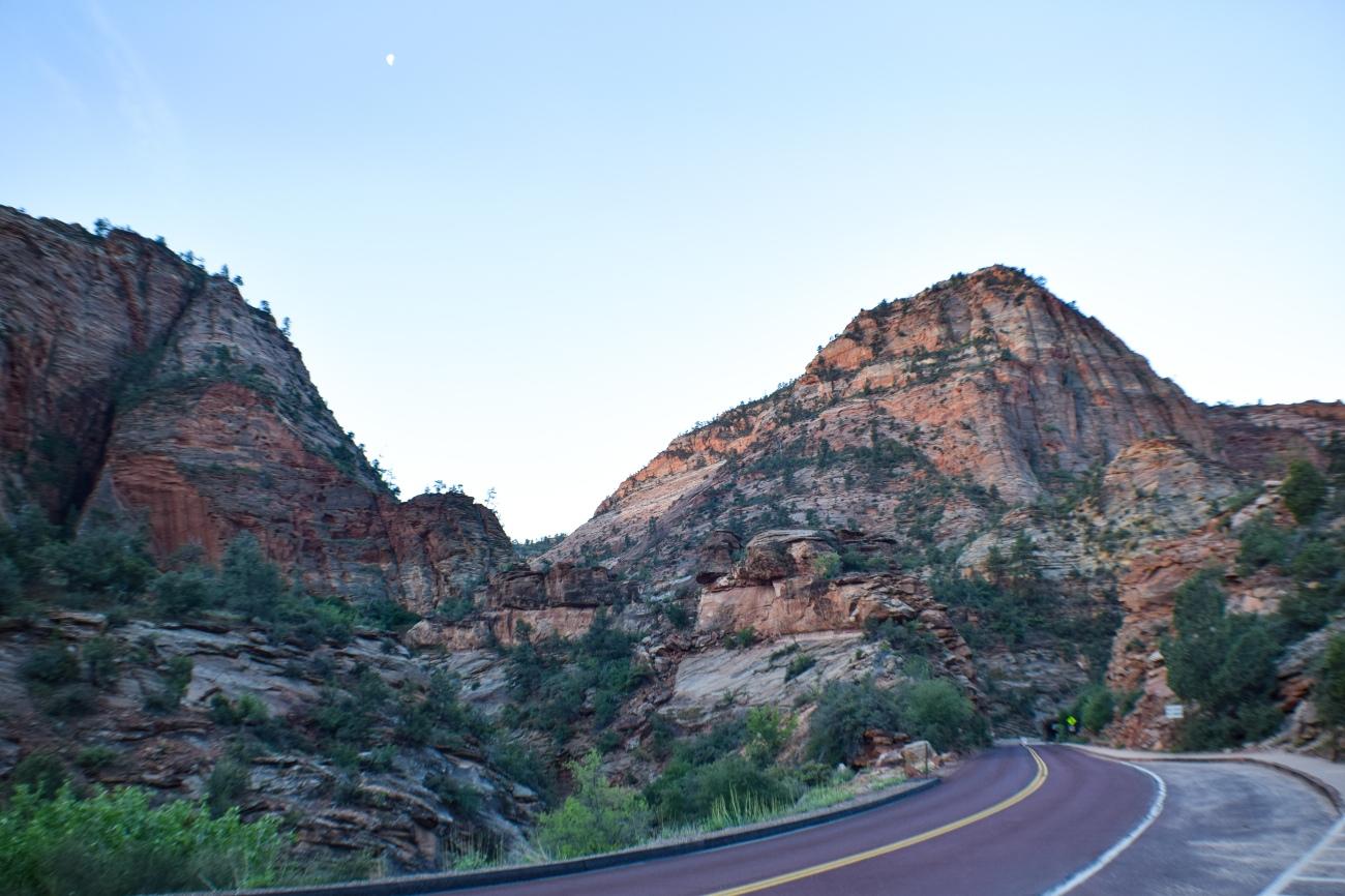 Zion national park, virgin river, landscape, sandstone cliffs, Utah National Parks, beautiful nature, Mount Carmel Zion Scenic Highway