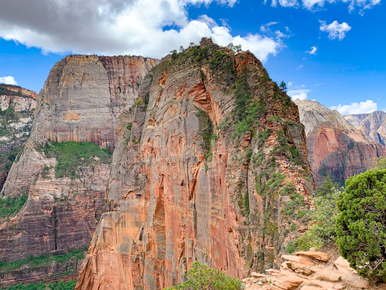 Zion national park, virgin river, landscape, sandstone cliffs, Utah National Parks, beautiful nature, Angel's Landing Summit, adventure hike, beautiful view