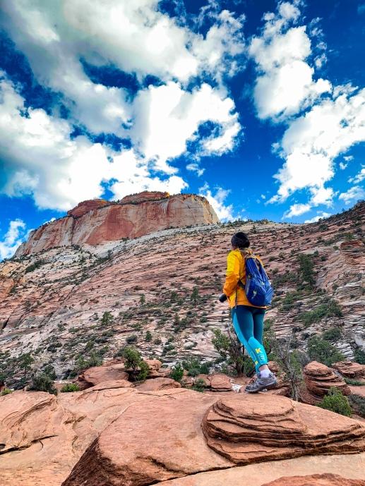 Zion national park, virgin river, landscape, sandstone cliffs, Utah National Parks, beautiful nature, Angel's Landing Summit, adventure hike, beautiful view, Canyon Overlook Trail View