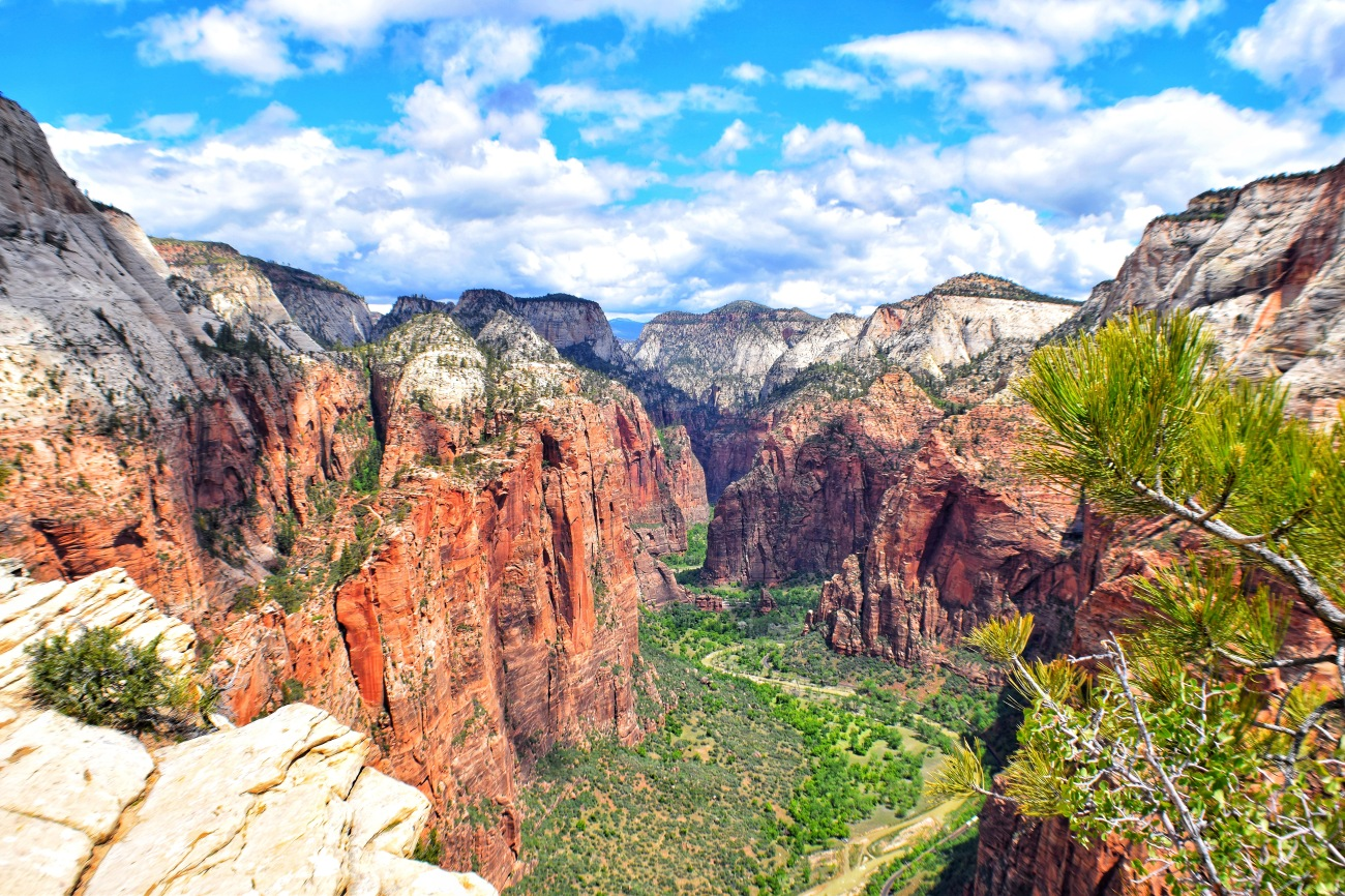 Zion national park, virgin river, landscape, sandstone cliffs, Utah National Parks, beautiful nature, Angel's Landing Summit, adventure hike, beautiful view, Scout's Lookout