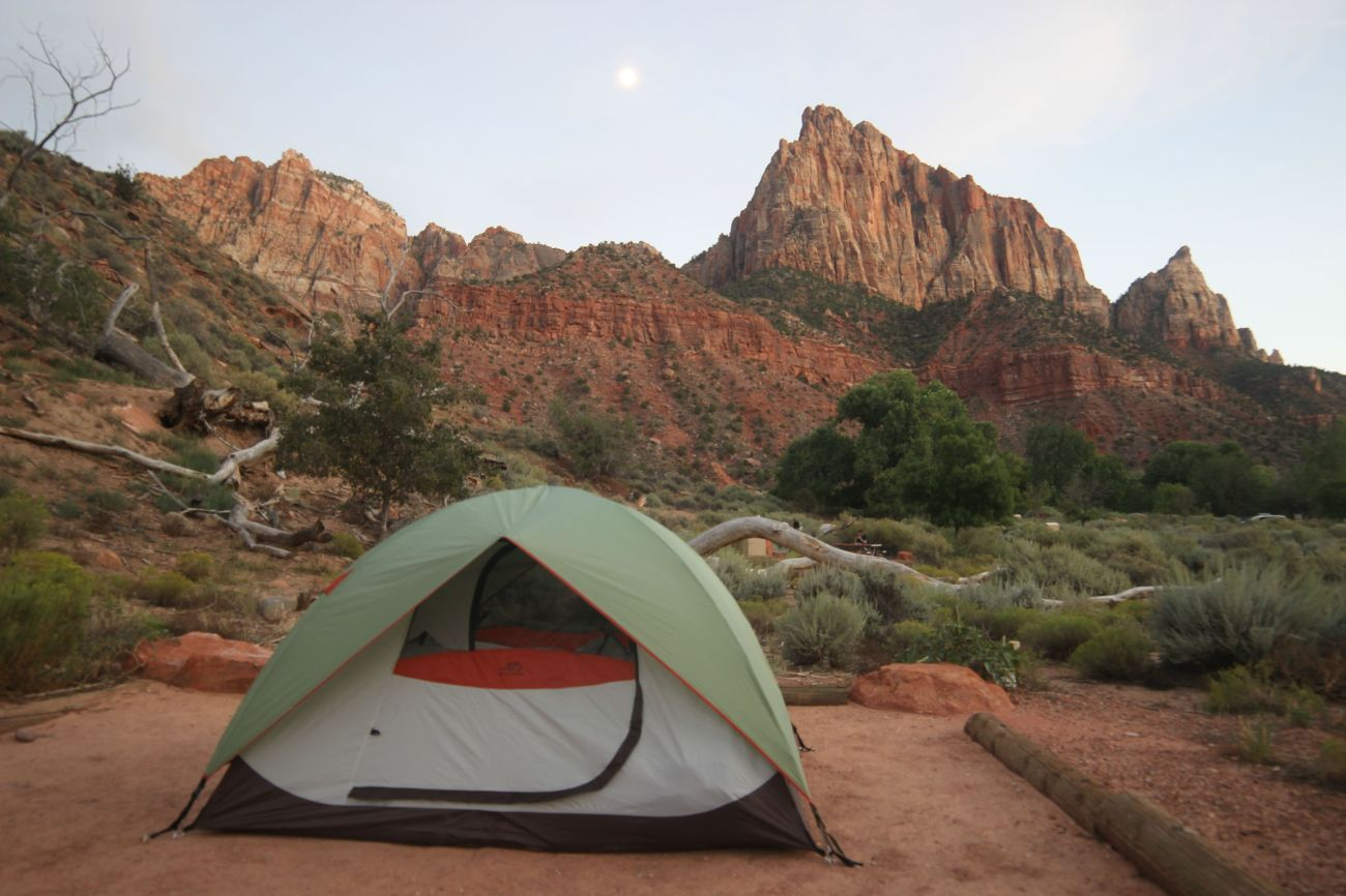 Zion national park, virgin river, landscape, sandstone cliffs, Utah National Parks, beautiful nature, Watchman Campground